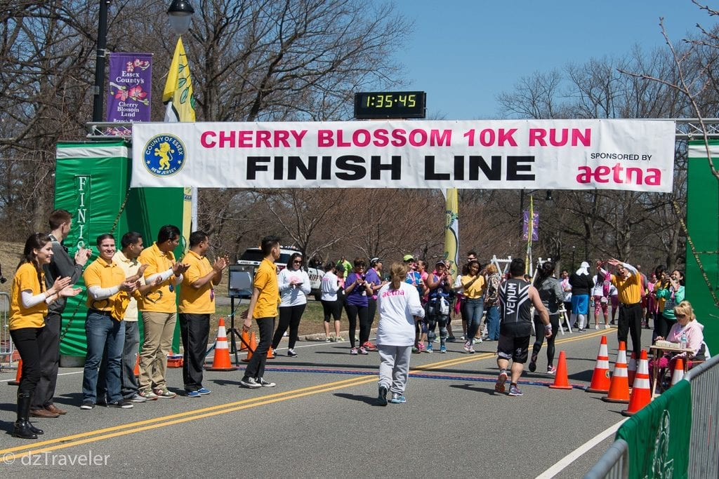 Cherry Blossom 10K Run